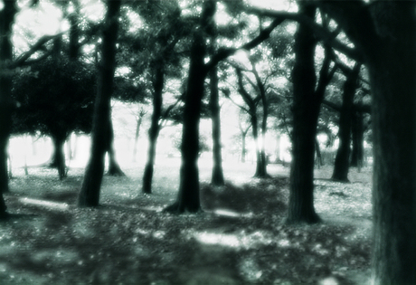Woods_199401