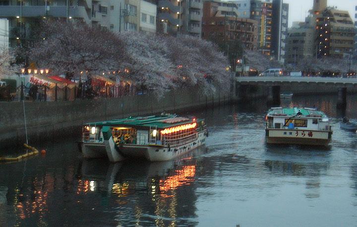 Oookagawa090403_sakura03